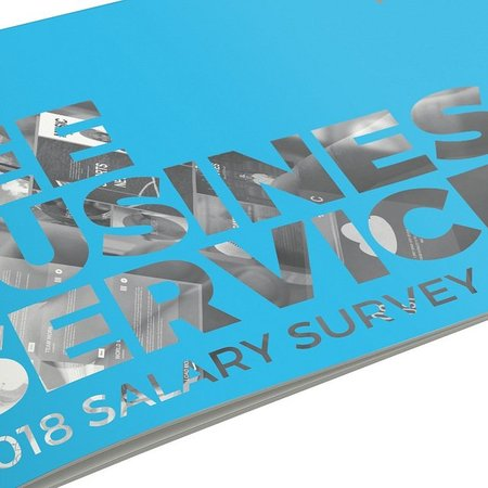 CEE Business Services 2018 Salary Survey